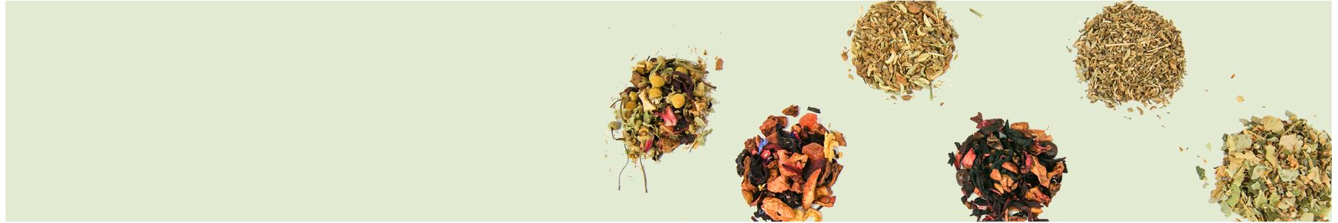 Mayorista y fabricante de tés e infusiones. Cooltea.es